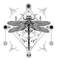 dragonfly black and white tattoo vector image vector image
