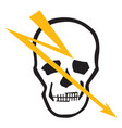 image of a human skull vector image vector image