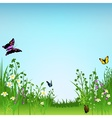 Meadow and Butterflies vector image vector image