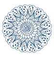 Round Floral Ornament vector image