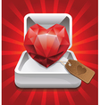 ruby in a box vector image vector image