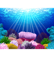 Seabed where there coral and shells vector image