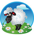 sheep with blade grass on color background vector image