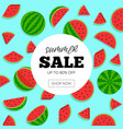 summer sale with water melon background vector image vector image