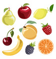 the fruit set in cartoon vector image