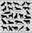 dogs suluette vector image vector image