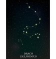 Draco and Delphinius constellation vector image