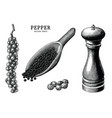 pepper collection hand draw vintage clip art vector image vector image