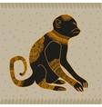 Anima monkey cool vector image vector image
