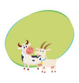 farm black spotted cow looking at white smiling vector image vector image