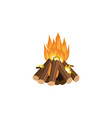 forest tourist campfire flame or fireplace cartoon vector image vector image