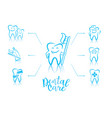 infographic of dentistry symbols vector image