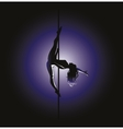 pole dance Kim position vector image vector image