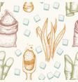 seamless pattern sugarcane cane sugar and vector image