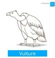 vulture bird learn birds coloring book vector image vector image