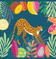 cute exotic wild big cat cheetah stretching vector image