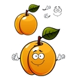 Fun cartoon apricot fruit character vector image vector image