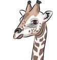 giraffe a vector image