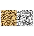 leopard seamless pattern background leopard vector image