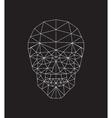 polygonal skull vector image