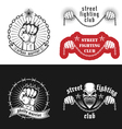 Street fighting emblem vector image vector image
