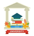 university education concept vector image vector image