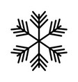 christmas snowflake winter decoration ornament vector image