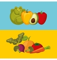healthy food isolated icon vector image