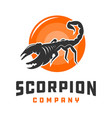 scorpion and circle animal logo design vector image vector image