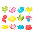 seaweed and corals set vector image vector image