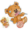 a brown teddy bear is vector image