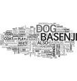 basenji egyptian dog text word cloud concept vector image vector image