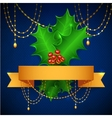 Christmas Holly Berry With Gradient Mesh vector image
