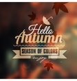 Creative graphic message for your autumn design vector image vector image