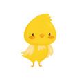 cute yellow chicken funny bird cartoon character vector image