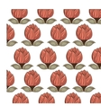 decorative flower pattern background vector image