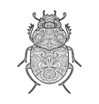 Scarab beetle coloring book for adults vector image