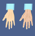 two types of hand old and young vector image