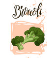 vegetable food banner broccoli sketch organic vector image vector image