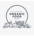 background with hand drawn organic food vector image vector image