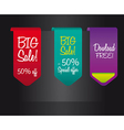 big sale labels vector image