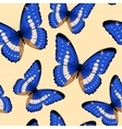 Blue butterflies seamless vector image vector image