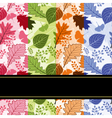 Colorful four season leaves vector image vector image