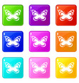 small butterfly set 9 vector image