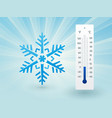 snowflake with a thermometer on frost vector image