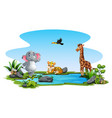 wild animals cartoon playing in pond vector image vector image
