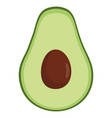 avocado fresh vegetable icon vector image