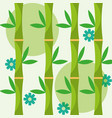 decoration natural bamboo flowers and leaves vector image