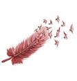 Feather bird background vector image vector image