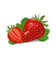Fresh red strawberry on white background